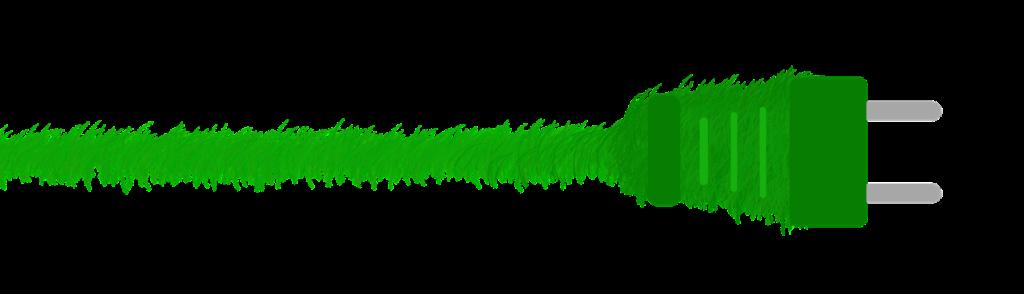 green-1974056_1920